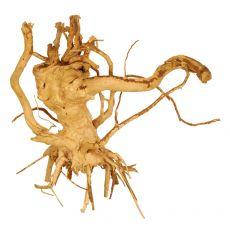 Akváriumi fagyökér - Cuckoo Root - 19 x 13 x 20 cm