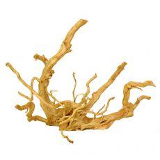 Akváriumi fagyökér - Cuckoo Root - 56 x 26 x 43 cm