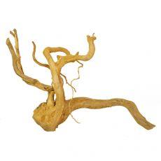 Akváriumi fagyökér - Cuckoo Root - 65 x 32 x 43 cm
