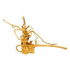 Akváriumi fagyökér - Cuckoo Root - 38 x 30 x 30 cm
