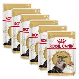 Royal Canin Adult PERSIAN - alutasakos táp, 6 x 85 g