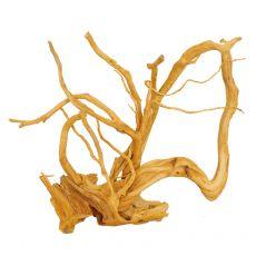 Akváriumi fagyökér - Cuckoo Root - 47 x 24 x 38 cm