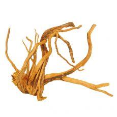 Akváriumi fagyökér - Cuckoo Root - 40 x 30 x 30 cm