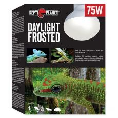 REPTI PLANET Daylight Frosted izzó 75W