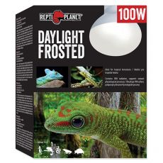 REPTI PLANET Daylight Frosted izzó 100W