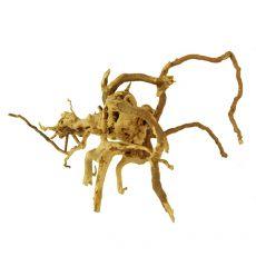 Akváriumi fagyökér - Cuckoo Root - 21 x 18 x 13 cm