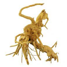Akváriumi fagyökér - Cuckoo Root - 15 x 11 x 15 cm