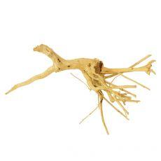 Akváriumi fagyökér - Cuckoo Root - 23 x 15 x 10 cm