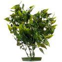 Növény akváriumba - műanyag, 28 cm szívalakú levelek