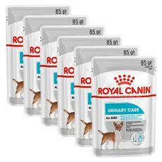 Royal Canin Dermacomfort Dog Loaf alutasakos pástétom veseproblémákkal küzdő kutyák számára 6 x 85 g
