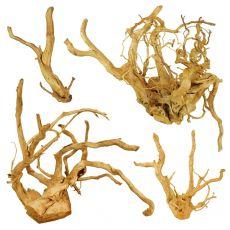 """Akváriumi fagyökér - Cuckoo Root """"PREMIUM"""", 30 - 60 cm"""