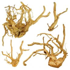 """Akváriumi fagyökér - Cuckoo Root """"PREMIUM"""", 20 - 40 cm"""