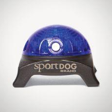 Világítás SportDog Beacon nyakörvhöz, kék