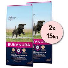 Eukanuba Developing Junior Large Breed 2 x 15 kg