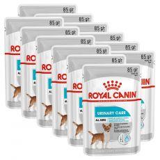 Royal Canin Dermacomfort Dog Loaf alutasakos pástétom veseproblémákkal küzdő kutyák számára 12 x 85 g