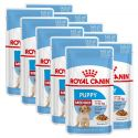 Royal Canin Medium Puppy alutasak 10 x 140 g