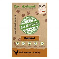Dr.Animal 100% fácáncsíkok 80 g