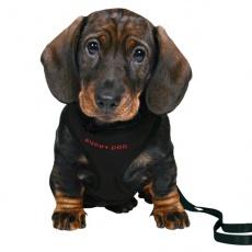 Hám és póráz kutyák számára - fekete