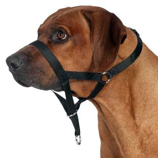 Kiképző kutyahám - L - XL, 37 cm