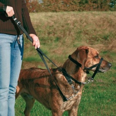 Kiképző kutyahám - XL, 46 cm