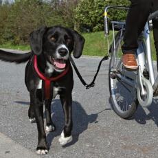 Kerékpárosoknak ajánlott készlet, nagyméretű kutyák biciklihez való rögzítéséhez