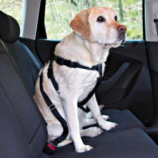 Autós kutyahám, biztonsági - L, 70 - 90 cm