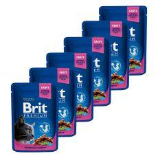 BRIT Premium Cat Chicken & Turkey alutasakos eledel 6 x 100 g