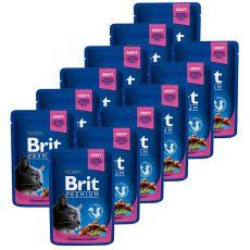 BRIT Premium Cat Chicken & Turkey alutasakos eledel 12 x 100 g