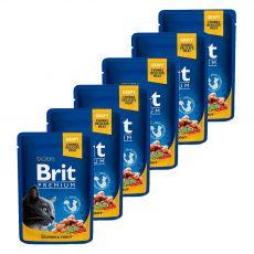 BRIT Premium Cat Salmon & Trout alutasakos eledel 6 x 100 g