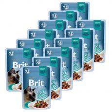 BRIT Premium Cat Delicate Fillets in Gravy with Beef alutasakos eledel 12 x 85 g