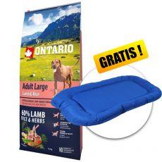 ONTARIO Adult Large - lamb & rice 12kg