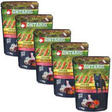 ONTARIO DOG zacskós kutyaeledel: porcos csirke húslevesben 5 x 100 g