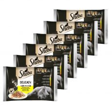 Sheba Delicacy szárnyashúsos alutasakos eledelek 6 x (4 x 85 g)