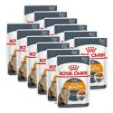 Royal Canin Intense BEAUTY 12 x 85g - alutasakos eledel