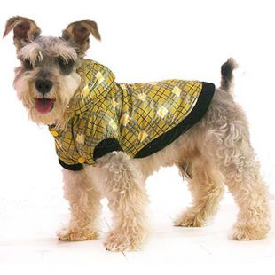 Kockás kabát kutyáknak - sárga, XL