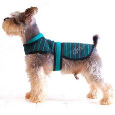 Kutya mellény - türkiz-fekete, XL