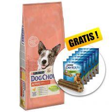 PURINA DOG CHOW Active 14kg+ AJÁNDÉK