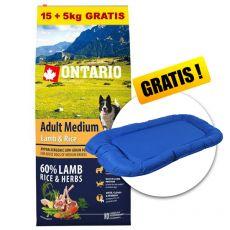 ONTARIO Adult Medium Lamb & Rice 15+5kg GRÁTISZ + AJÁNDÉK