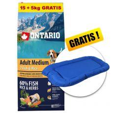 ONTARIO Adult Medium 7 Fish & Rice 15+5kg GRÁTISZ+ AJÁNDÉK