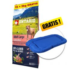 ONTARIO Adult Large - lamb & rice 15+5kg GRÁTISZ+ AJÁNDÉK