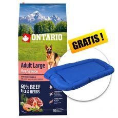 ONTARIO Adult Large Beef & Rice 12kg  + AJÁNDÉK