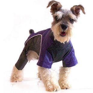 Overál kutyák számára - lila-fekete, XL