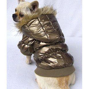 Kutya tolldzseki kapucnival - arany, XXL