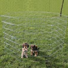 Kerítés kölyök és kistestű kutyáknak