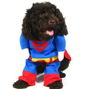 Jelmez kutyának SUPERMAN - L