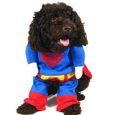Jelmez kutyáknak SUPERMAN - XL