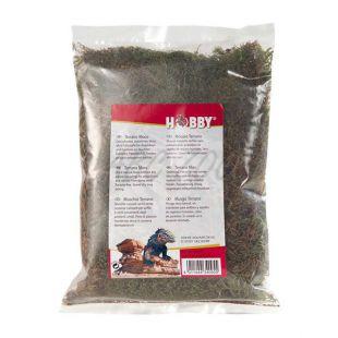 Szárított természetes moha - Terano natural moss