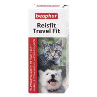 Utazási tabletta kutyáknak