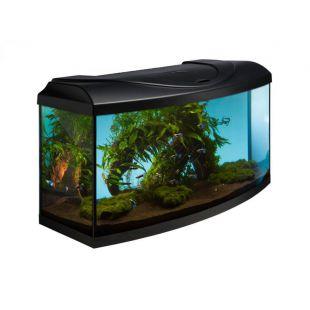 Íves DIVERSA STARTUP 80 akvárium szett - fekete