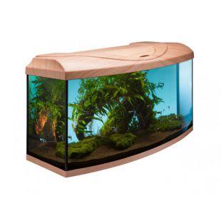 Íves DIVERSA STARTUP 80 akvárium szett - bükk
